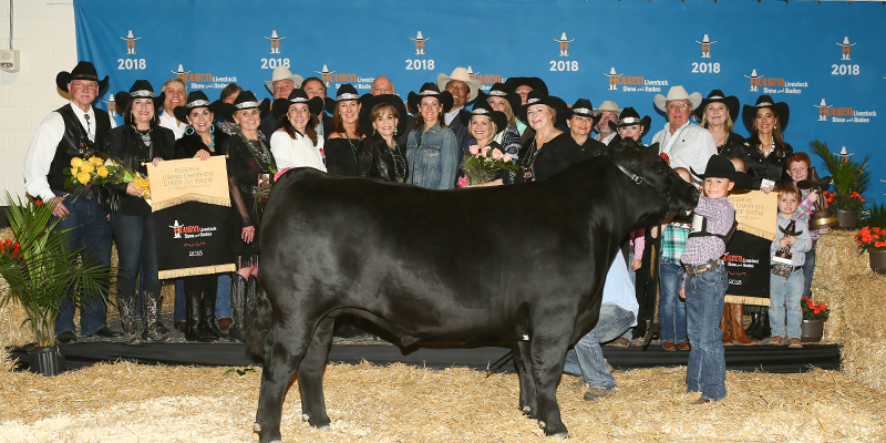 Res Grand Champion Steer